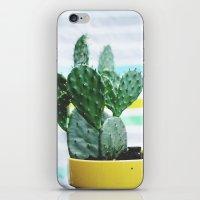 Summer Succulent iPhone & iPod Skin