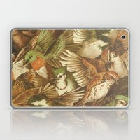Red-Throated, Black-capped, Spotted, Barred Laptop & iPad Skin