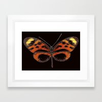 Untitled Butterfly 2 Framed Art Print