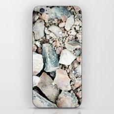 Stone Cold Fox iPhone & iPod Skin
