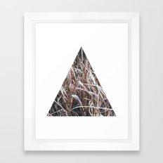 Grass, tall and brown Framed Art Print