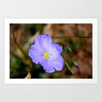 Mountain Floral Art Print