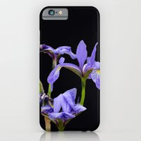 iPhone Cases featuring Trusty and true by anipani