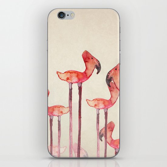 transmogrified flamingo colony iPhone & iPod Skin