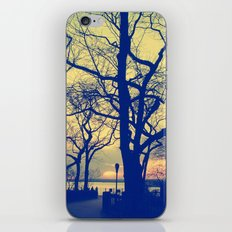 Brooklyn II iPhone & iPod Skin
