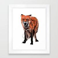 Angry Fox (color) Framed Art Print