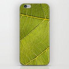Fig Leaf iPhone & iPod Skin