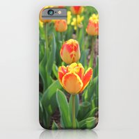 First Sign Of Spring iPhone 6 Slim Case