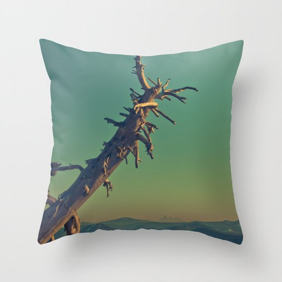 masonry  Throw Pillow