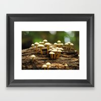 Mini Mushrooms Framed Art Print