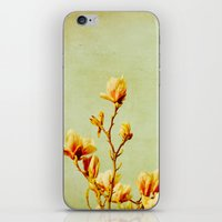 wednesday's magnolias iPhone & iPod Skin