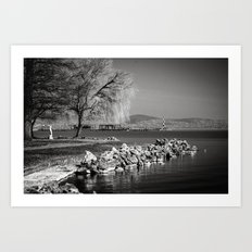 Balaton Art Print