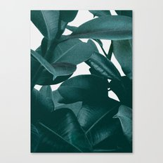 Pulling me in Canvas Print