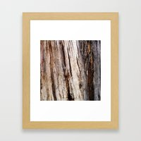 Shiver Me Timbers - 1 Framed Art Print