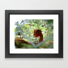 Free Range Framed Art Print