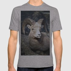 Tom Feiler Mountain Goat Mens Fitted Tee Athletic Grey SMALL