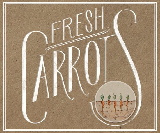 Fresh Carrots Art Print