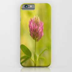 Red clover in August iPhone 6 Slim Case
