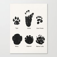 Animal Track Canvas Print