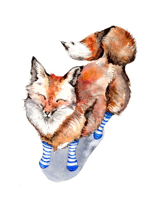Smiling Red Fox in Blue Socks Art Print