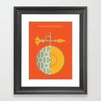 Fruit: Cantaloupe Framed Art Print