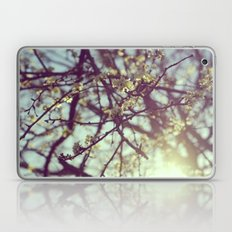 Signs of Spring Laptop & iPad Skin