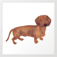 Dachshund Sausage Dog Art Print