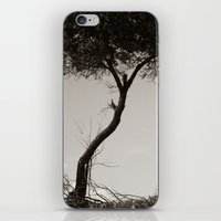 How's The Serenity? iPhone & iPod Skin