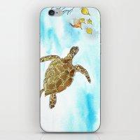 Turtle Reef iPhone & iPod Skin