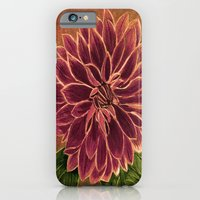 iPhone & iPod Case featuring Dahlia  by maggs326