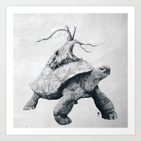 Tortoise Tree Art Print