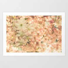 a sunny day in spring Art Print