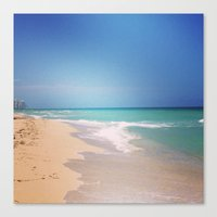 Blue For You Canvas Print
