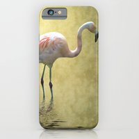 iPhone & iPod Case featuring Flamingo by Shalisa Photography