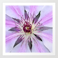 Desert Flower Art Print