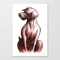 Talking Dogs Canvas Print