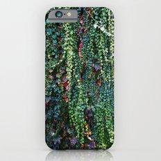 Ivy Slim Case iPhone 6s