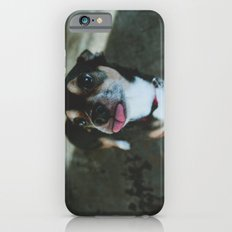 rick Slim Case iPhone 6s