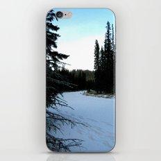 Wintertime in WaterValley iPhone & iPod Skin