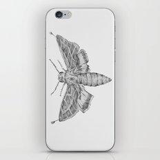 Moth iPhone & iPod Skin