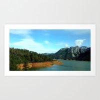 Lake Shasta Art Print
