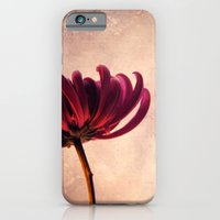 iPhone Cases featuring lys by Claudia Drossert