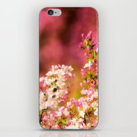 Pretty and Pink crab apple blossoms iPhone & iPod Skin