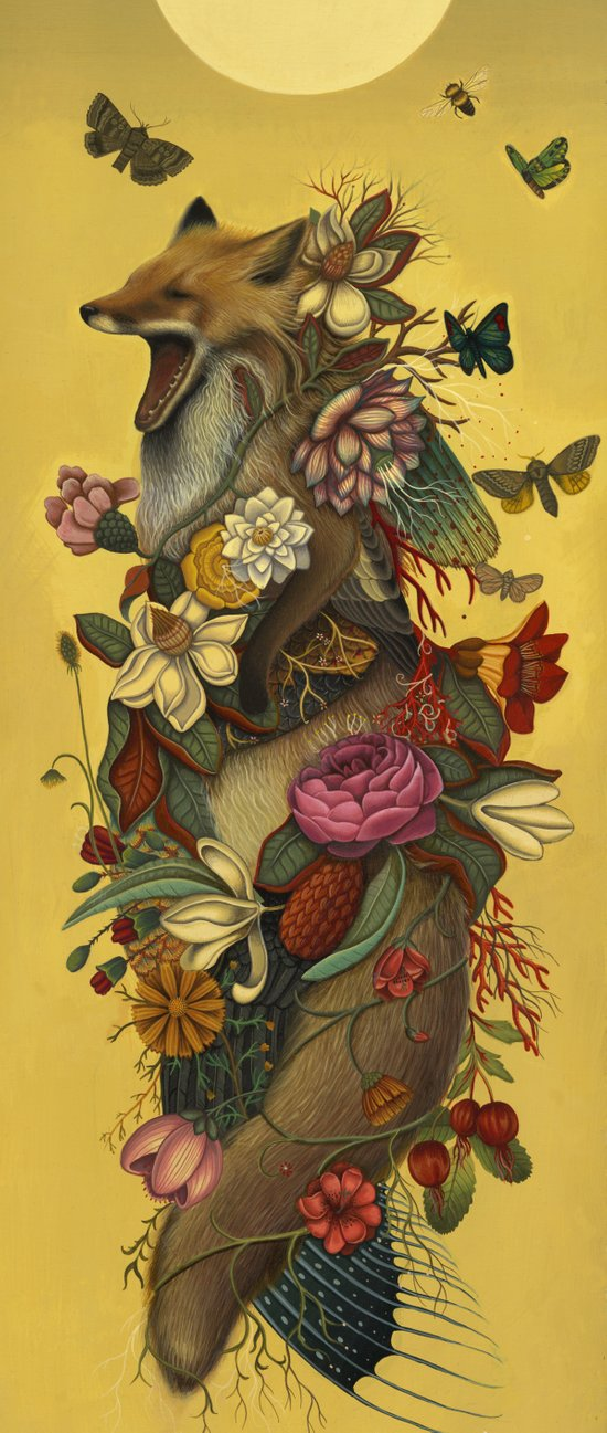 Fox Confessor Canvas Print