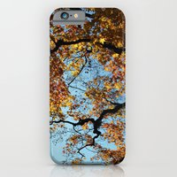 iPhone & iPod Case featuring Japanese Maple by Michelle Chavez