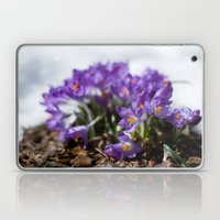 Crocuses in Snow Laptop & iPad Skin