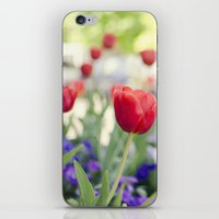 Welcome Spring iPhone & iPod Skin