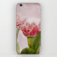 Dolcemente iPhone & iPod Skin