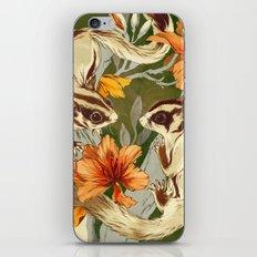 Sugar Gliders iPhone & iPod Skin