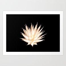 Efflorescence 25 Art Print